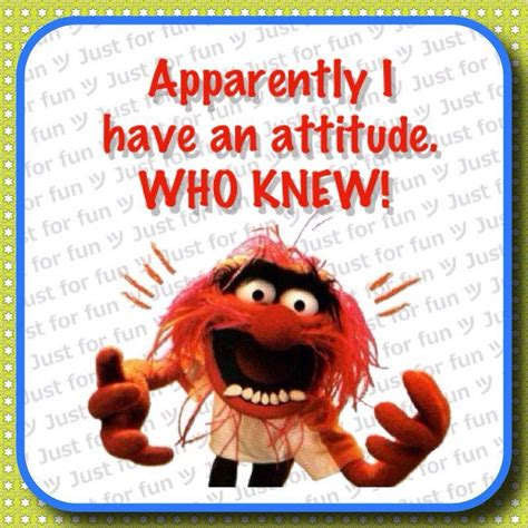 Who knew? #muppets #animal #attitude   Humor, Funny quotes