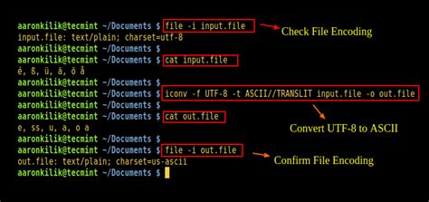 How to Convert Files to UTF-8 Encoding in Linux