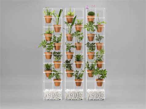 Plant Walls and Live Wall Art - Eco Green Office Plants