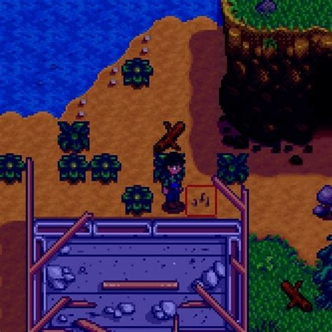 Stardew Valley Tips and Tricks for Beginners! – The C-Stick